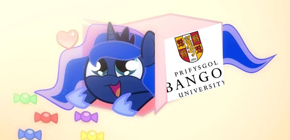 Bangor Uni Brony Society