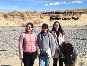 International Students Go Green With Bangor Litter Pick