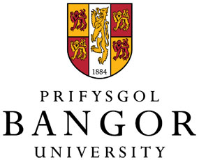 Bangor University to develop synthetic Welsh language voice