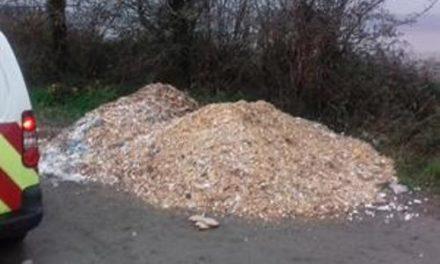 Gwynedd Council investigate fly-tipping at Aberogwen near Bangor