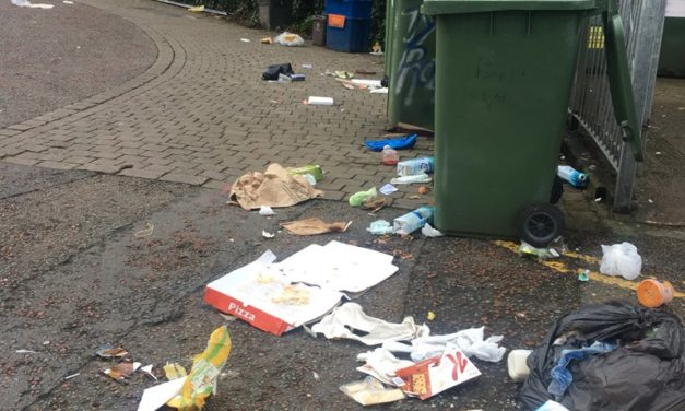 Bangor 'Spring Clean' planned to address litter problem