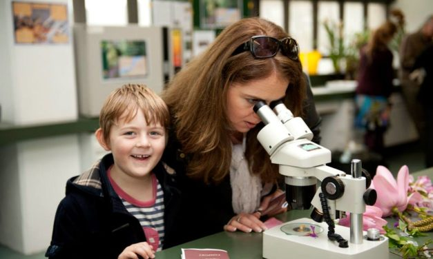 Hidden Worlds 2018 – Interactive science for all the family at Bangor University