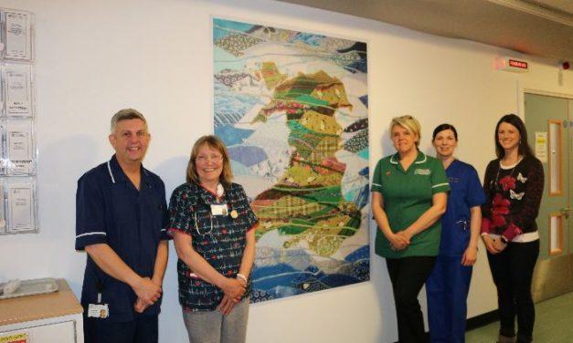 Josie Russell's art brightens up Ysbyty Gwynedd's Emergency Department