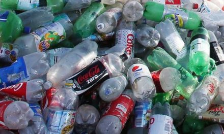 City Council support campaign for plastic free Bangor