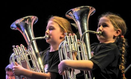 Music project brings harmony to local schools and homes