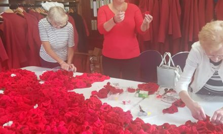 Final appeal for 'knitted poppies' for huge Bangor Cathedral display