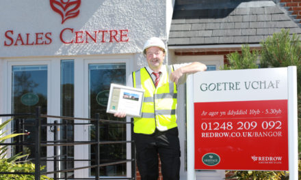 Goetre Uchaf Housing Development Wins Excellence Award