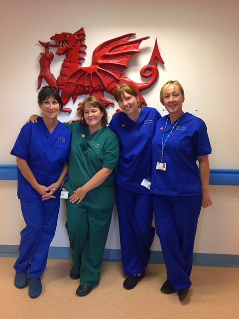 Ysbyty Gwynedd Urology Team Sponsored Walk For Prostate Cancer