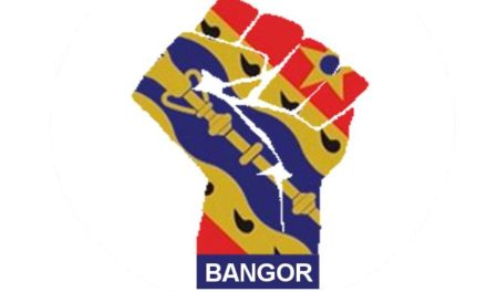 Bangor City Supporters Association Suspends All Activity