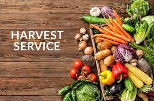 Harvest Festival at Bangor Cathedral