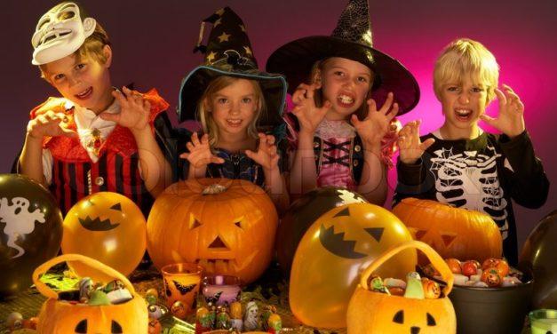 Spooktacular Halloween at the Deiniol Centre in Bangor