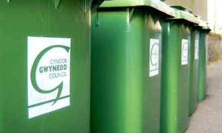 Gwynedd Waste & Recycling Guide for Christmas 2018