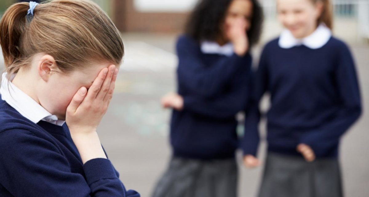 Bangor University introduce programme to reduce school bullying