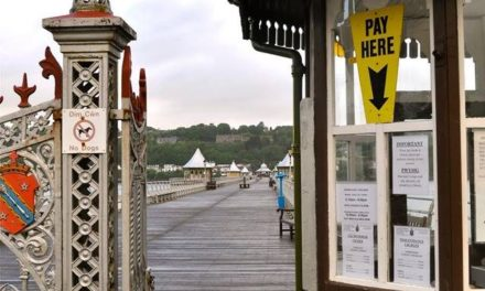 Dogs will be allowed on Bangor Pier from today