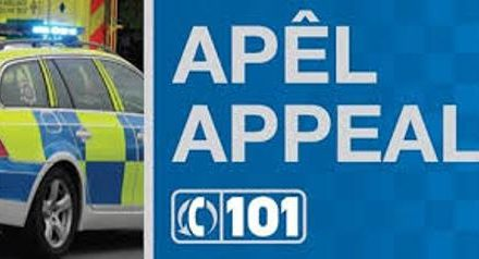 Police appeal after Penrhosgarnedd burglaries