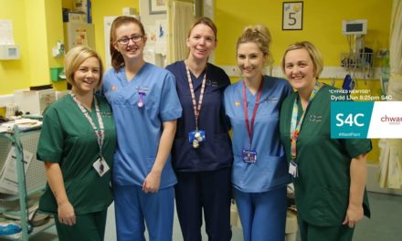 New series of 'Ward Plant' begins on S4C on 8th January