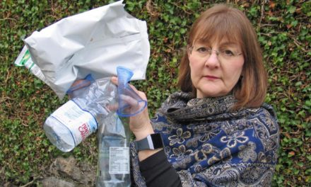 Bangor Councillor leads the national debate on plastic reduction