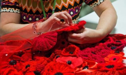 Huge Knitted Poppy Display Planned for Bangor Cathedral