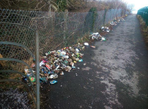 Bangor Schools' Tidy Towns Litter Partnership