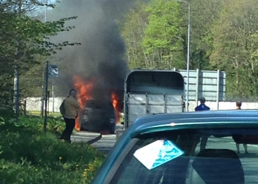 Quick thinking driver saves livestock in Bangor vehicle fire