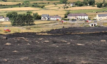 Police appeal to find teenagers who tried to re-start Bethesda wildfire