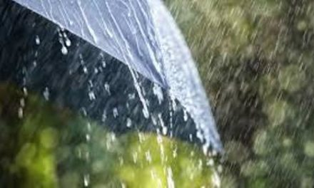Warning of heavy rain and thunderstorms on Friday