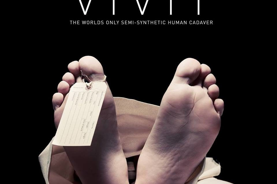 'VIVIT' the 'human body dissection experience' to visit Bangor University