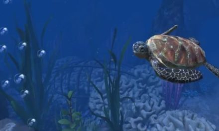 Virtual Reality enables you to explore the ocean – in Welsh!