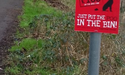 Gwynedd Council campaign against Dog fouling gets underway
