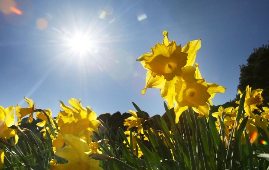 Sunny weather on the way this weekend