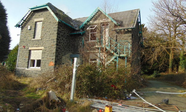 New Bat Report could give Ysbyty Minffordd demolition go-ahead