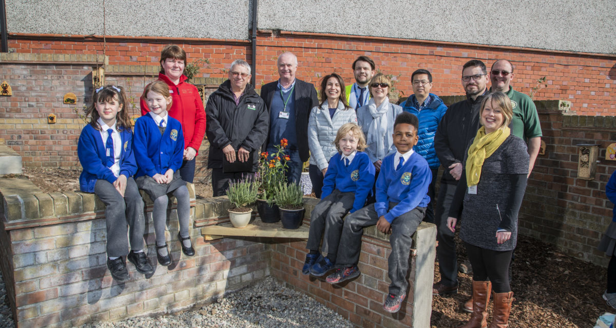 Bangor pupils transform fly-tipping hot-spot into outdoor learning space