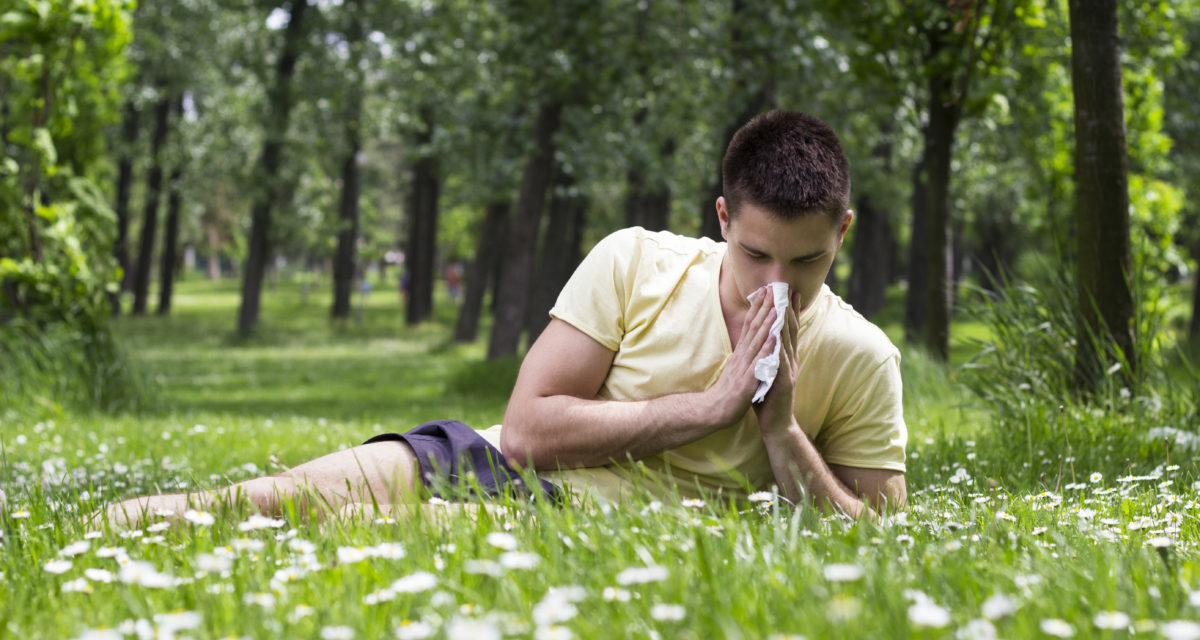 Bangor Uni scientists identify the grass pollen that gets up your nose