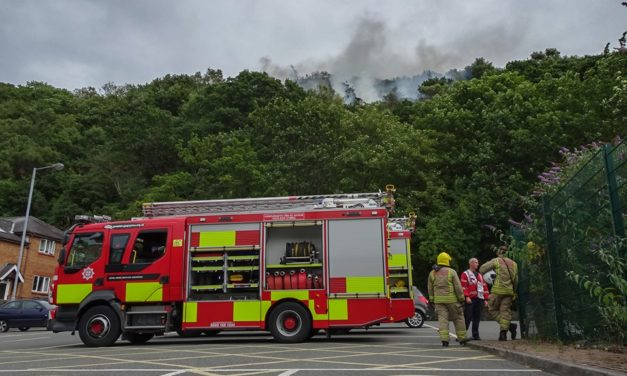 Three fire crews tackle Bangor mountain blaze